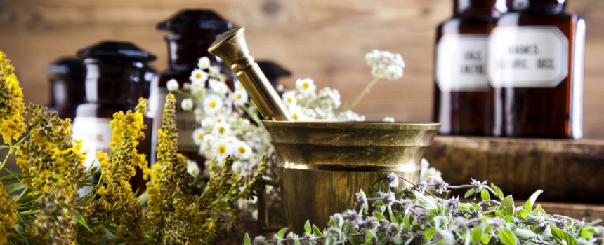 10 herbs you can easily grow at home